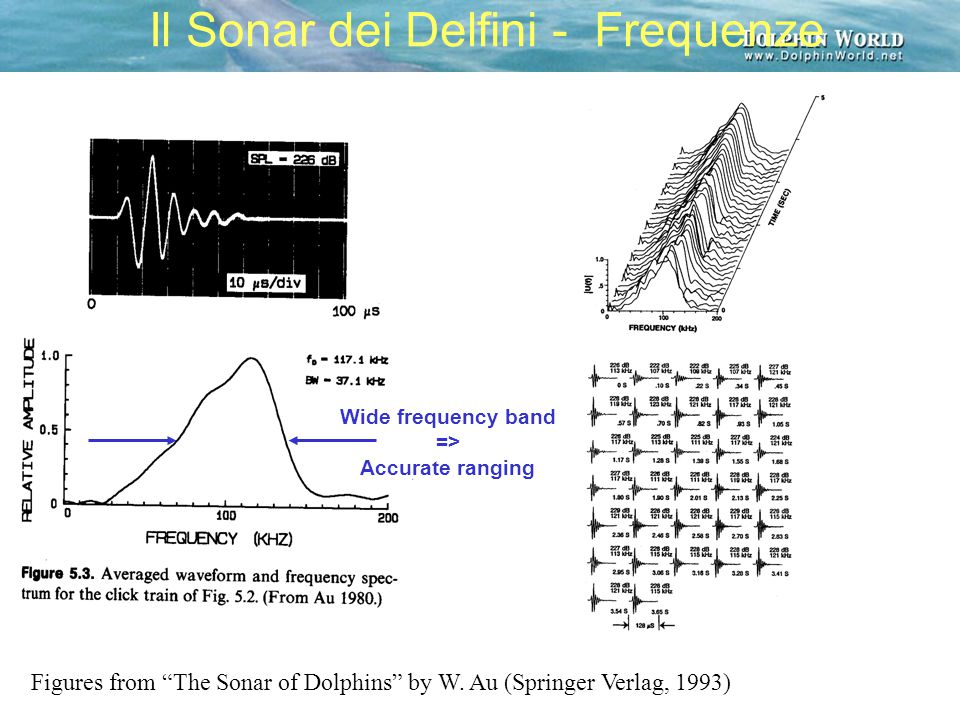 Il Sonar dei Delfini - Frequenze Figures from The Sonar of Dolphins by W.