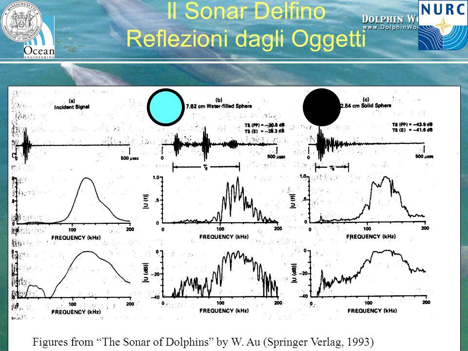 """H. Schmidt – MIT/NURC Festival della Scienza, 2007 Il Sonar Delfino Reflezioni dagli Oggetti Figures from """"The Sonar of Dolphins"""" by W. Au (Springer V"""
