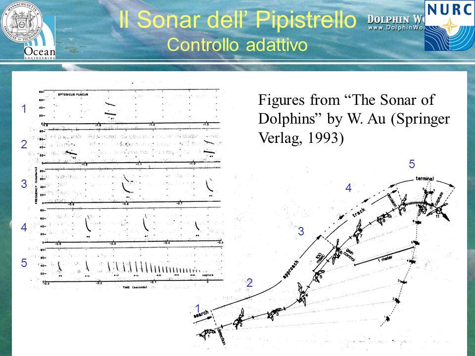 """H. Schmidt – MIT/NURC Festival della Scienza, 2007 Il Sonar dell' Pipistrello Controllo adattivo Figures from """"The Sonar of Dolphins"""" by W. Au (Spring"""