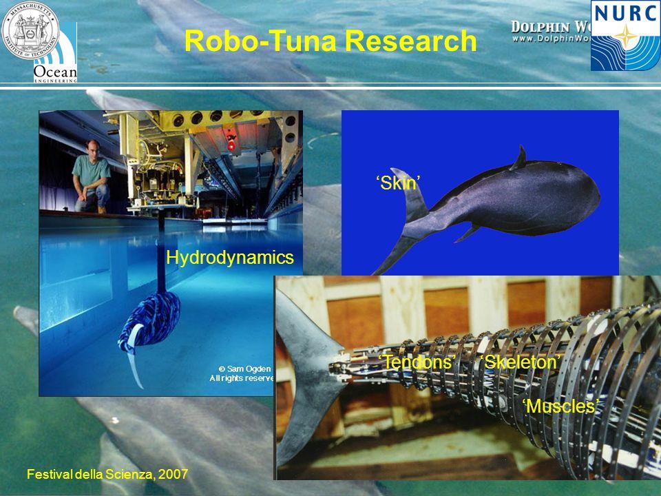 H. Schmidt – MIT/NURC Festival della Scienza, 2007 Robo-Tuna Research 'Skin' 'Skeleton''Tendons' 'Muscles' Hydrodynamics