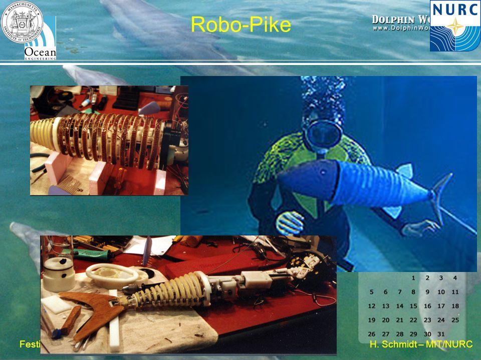 H. Schmidt – MIT/NURC Festival della Scienza, 2007 Robo-Pike