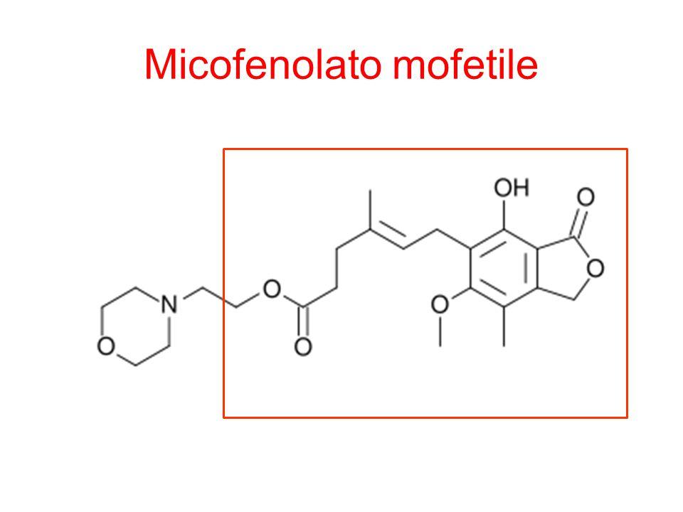 Micofenolato mofetile