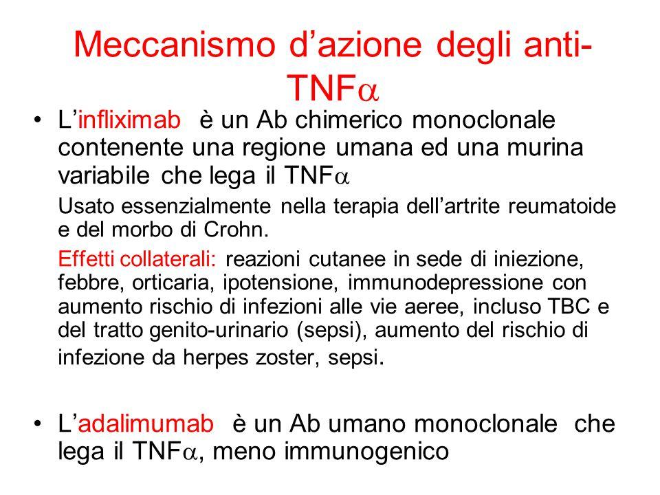 Meccanismo d'azione degli anti- TNF  L'infliximab è un Ab chimerico monoclonale contenente una regione umana ed una murina variabile che lega il TNF  Usato essenzialmente nella terapia dell'artrite reumatoide e del morbo di Crohn.