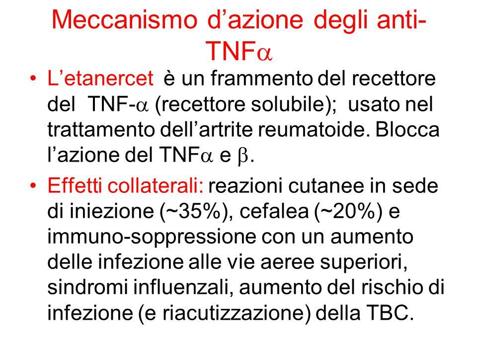 Meccanismo d'azione degli anti- TNF  L'etanercet è un frammento del recettore del TNF-  (recettore solubile); usato nel trattamento dell'artrite reu