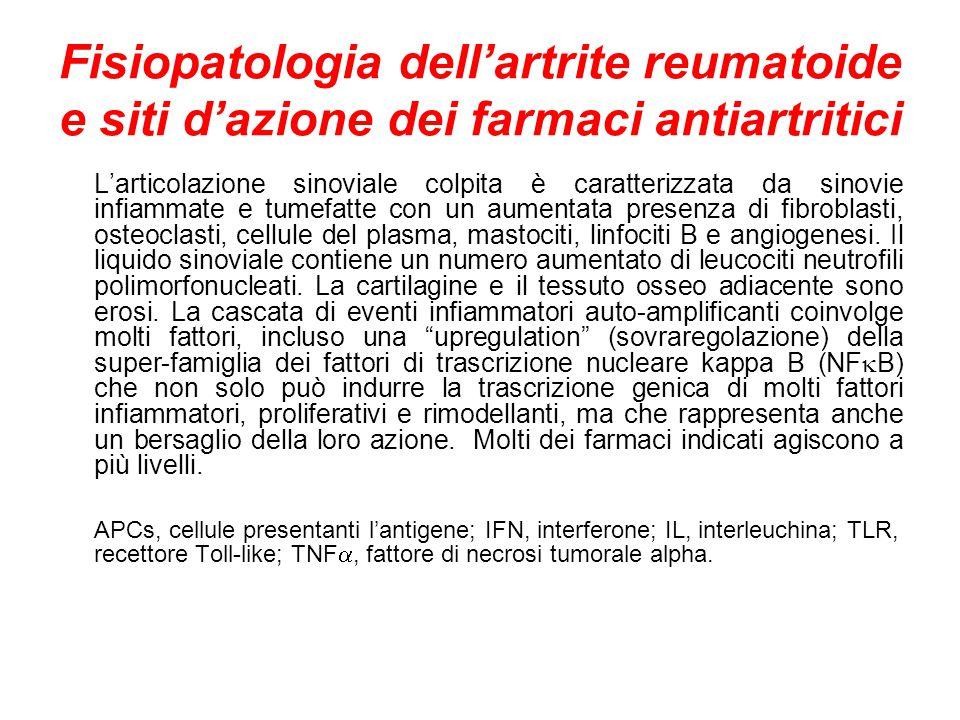 Fisiopatologia dell'artrite reumatoide e siti d'azione dei farmaci antiartritici L'articolazione sinoviale colpita è caratterizzata da sinovie infiammate e tumefatte con un aumentata presenza di fibroblasti, osteoclasti, cellule del plasma, mastociti, linfociti B e angiogenesi.