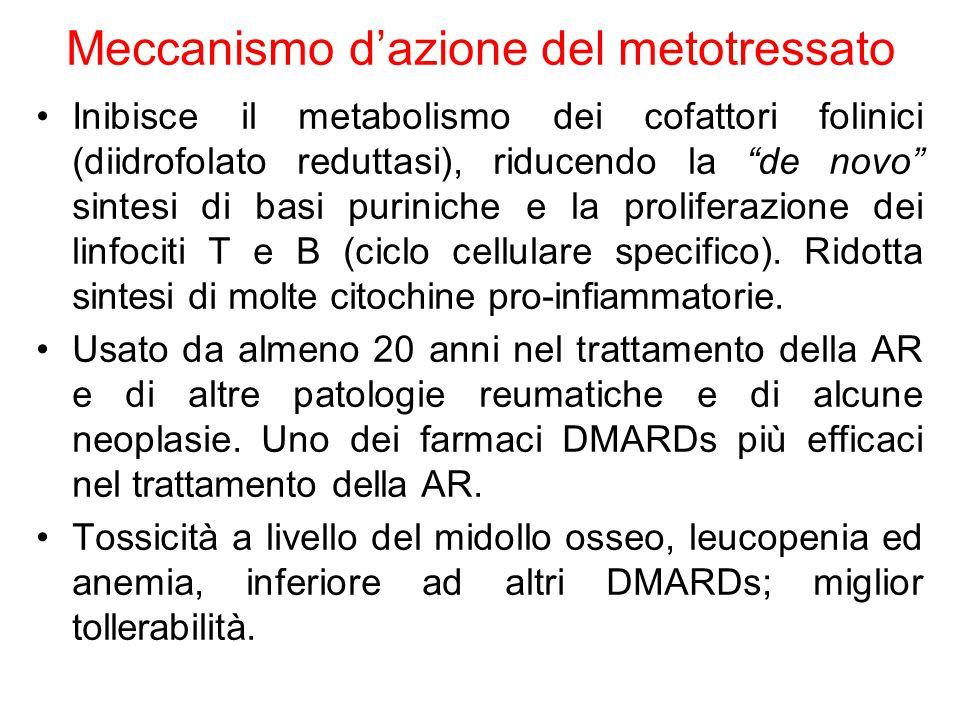 Meccanismo d'azione del metotressato Inibisce il metabolismo dei cofattori folinici (diidrofolato reduttasi), riducendo la de novo sintesi di basi puriniche e la proliferazione dei linfociti T e B (ciclo cellulare specifico).