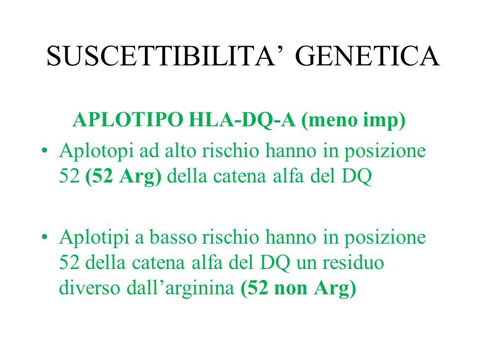 SUSCETTIBILITA' GENETICA APLOTIPO HLA-DQ-A (meno imp) Aplotopi ad alto rischio hanno in posizione 52 (52 Arg) della catena alfa del DQ Aplotipi a bass