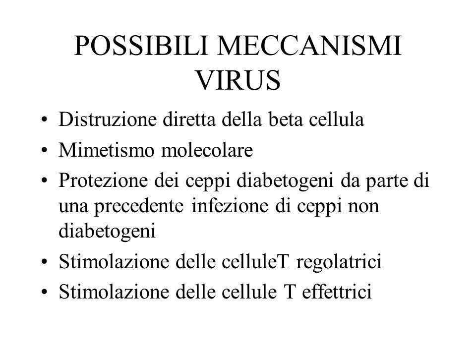 POSSIBILI MECCANISMI VIRUS Distruzione diretta della beta cellula Mimetismo molecolare Protezione dei ceppi diabetogeni da parte di una precedente inf