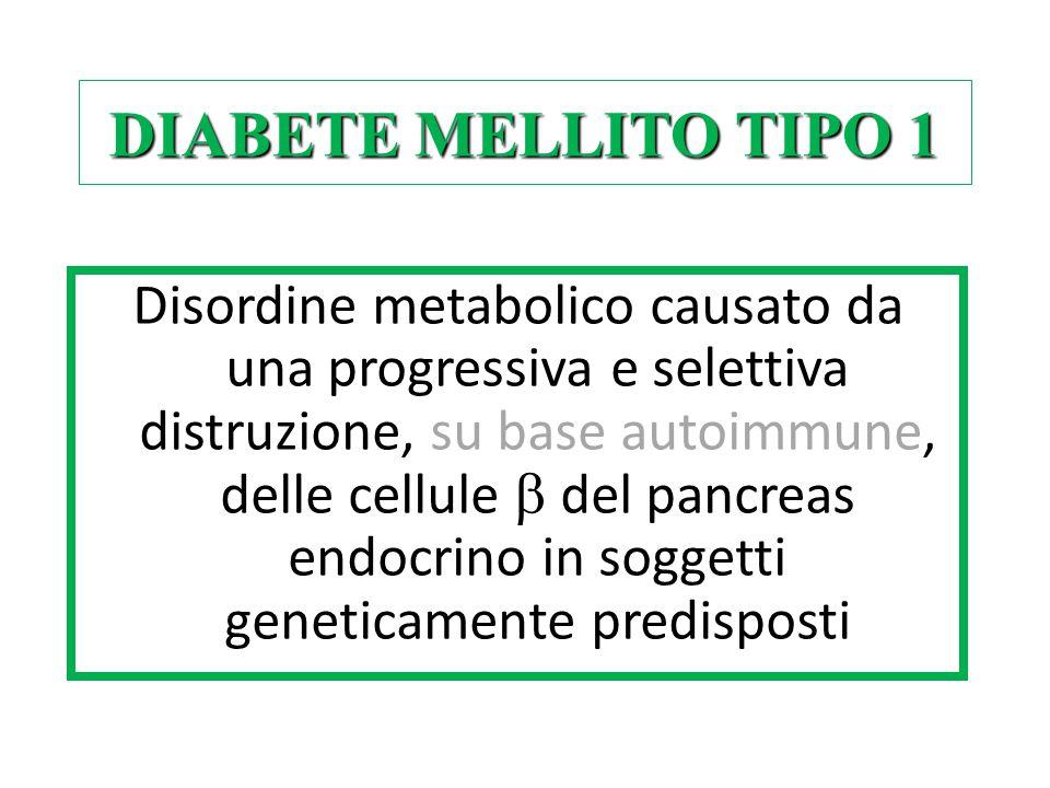 Disordine metabolico causato da una progressiva e selettiva distruzione, su base autoimmune, delle cellule  del pancreas endocrino in soggetti geneti