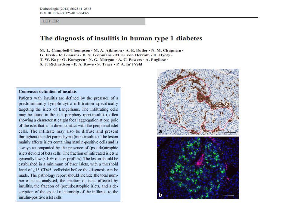Patogenesi cellulo-mediata Anticorpi epifenomeno utili come prevenzione e predizione