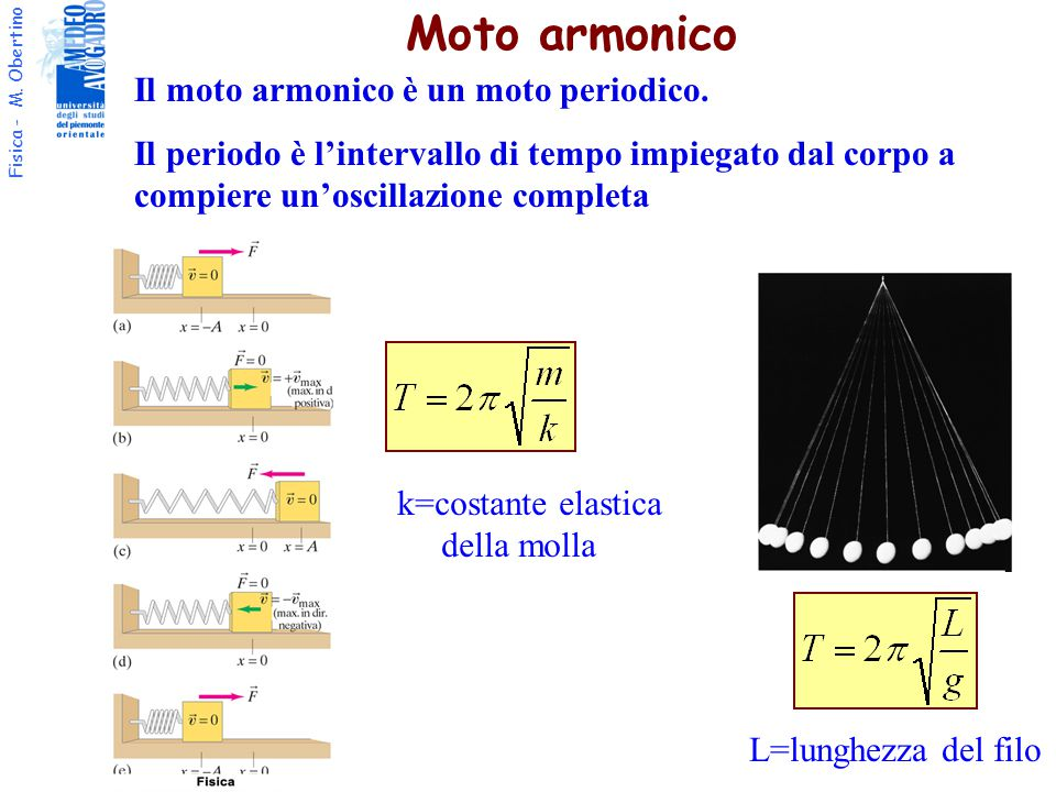 Fisica - M. Obertino Il moto armonico è un moto periodico. Il periodo è l'intervallo di tempo impiegato dal corpo a compiere un'oscillazione completa
