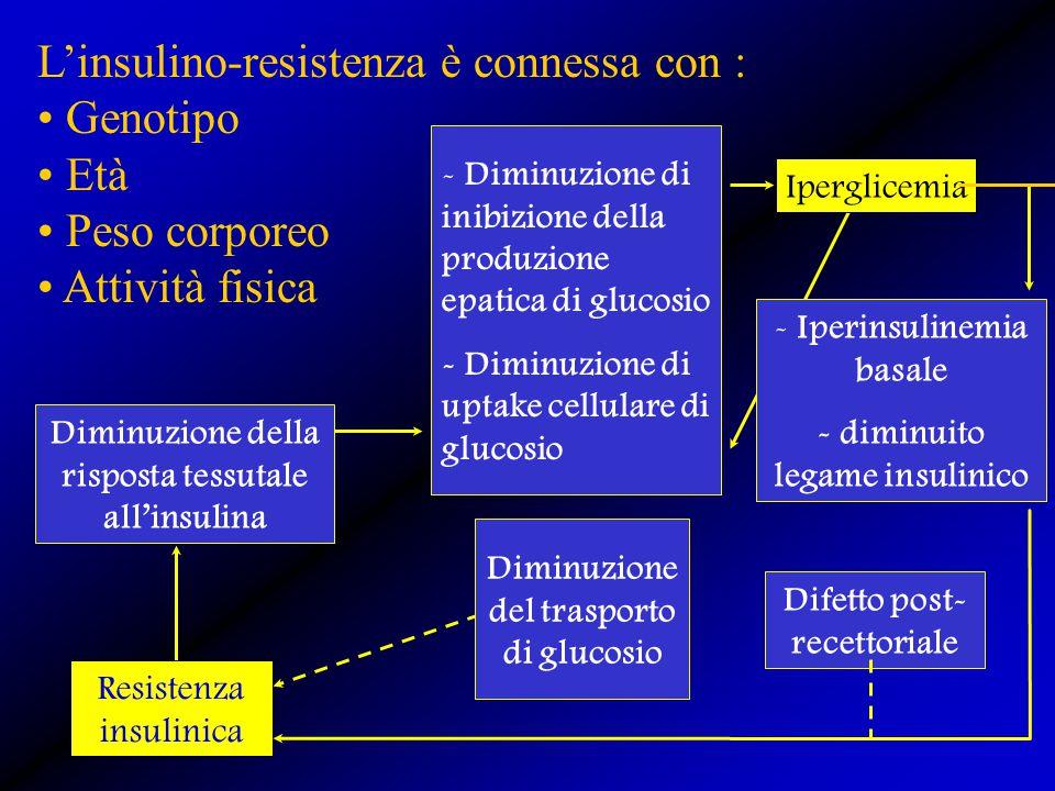 Resistenza insulinica Diminuzione della risposta tessutale all'insulina - Diminuzione di inibizione della produzione epatica di glucosio - Diminuzione