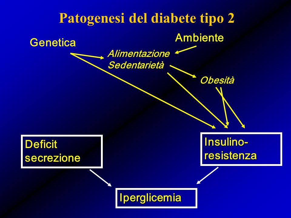 Patogenesi del diabete tipo 2 Deficit secrezione Insulino- resistenza Genetica Ambiente Alimentazione Sedentarietà Obesità Iperglicemia