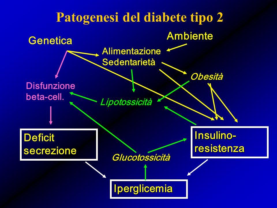 Patogenesi del diabete tipo 2 Deficit secrezione Insulino- resistenza Genetica Ambiente Alimentazione Sedentarietà Obesità Iperglicemia Lipotossicità