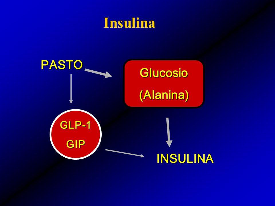 GLP-1GIP PASTO PASTO INSULINA Glucosio(Alanina)