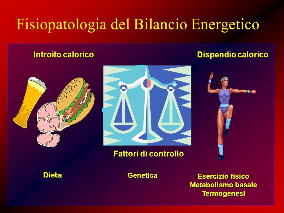 Fisiopatologia del Bilancio Energetico Introito calorico Dispendio calorico Fattori di controllo Genetica Esercizio fisico Metabolismo basale Termogen