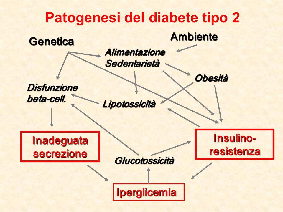 Patogenesi del diabete tipo 2 Inadeguata secrezione Insulino- resistenza Genetica Ambiente Alimentazione Sedentarietà Obesità Iperglicemia Lipotossici
