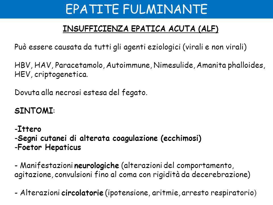 EPATITE FULMINANTE INSUFFICIENZA EPATICA ACUTA (ALF) Può essere causata da tutti gli agenti eziologici (virali e non virali) HBV, HAV, Paracetamolo, Autoimmune, Nimesulide, Amanita phalloides, HEV, criptogenetica.