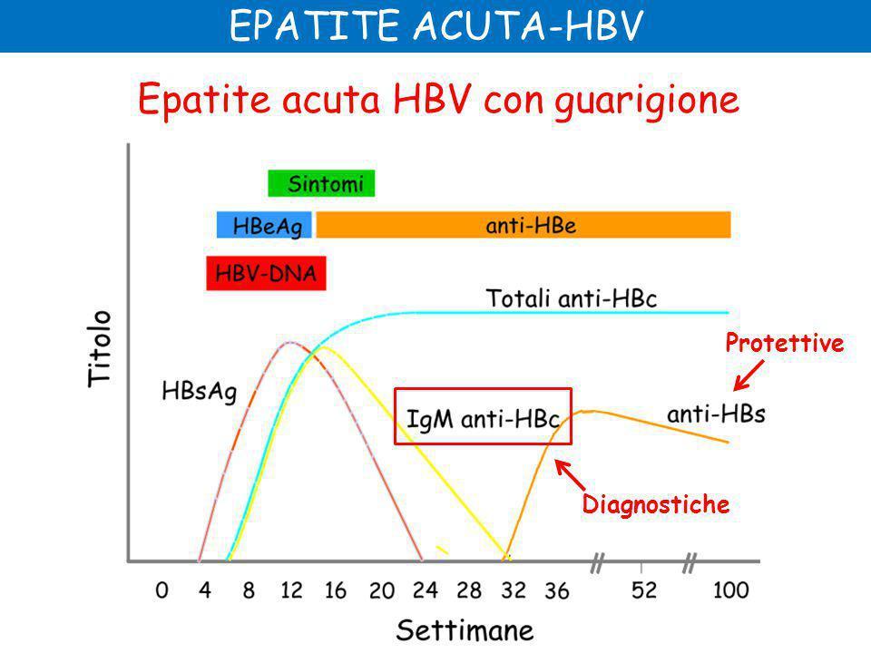 EPATITE ACUTA-HBV Epatite acuta HBV con guarigione Diagnostiche Protettive