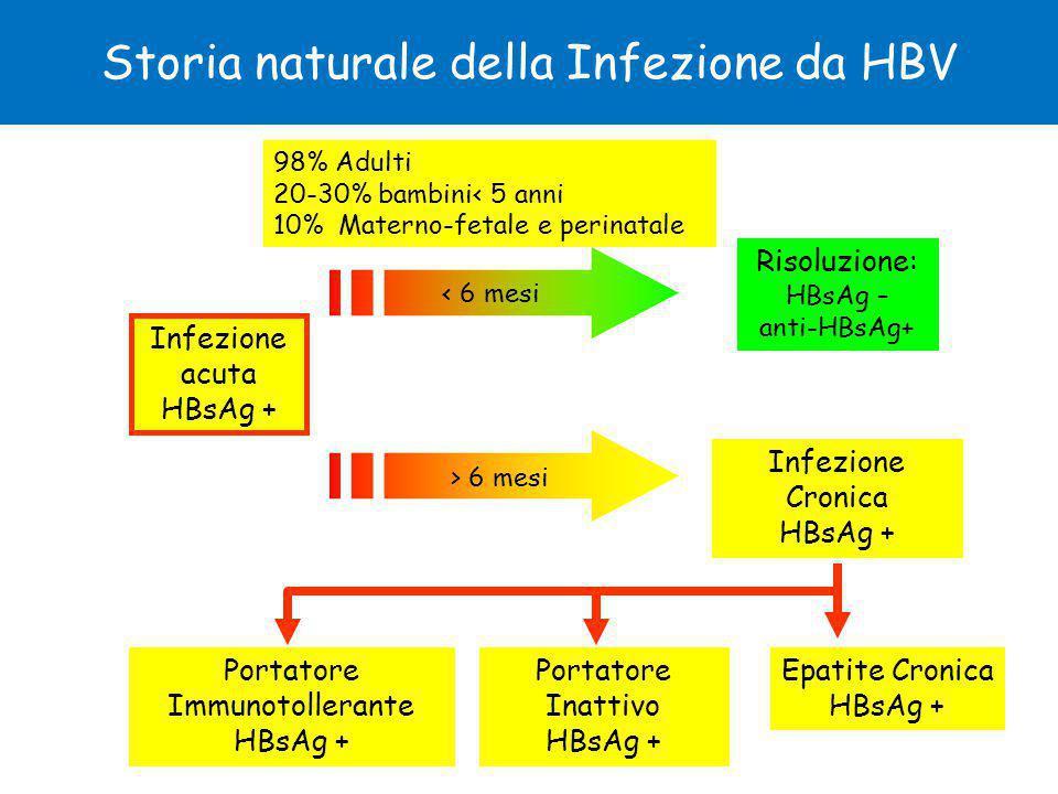 Risoluzione: HBsAg – anti-HBsAg+ Infezione Cronica HBsAg + Storia naturale della Infezione da HBV Portatore Inattivo HBsAg + Epatite Cronica HBsAg + Portatore Immunotollerante HBsAg + Infezione acuta HBsAg + < 6 mesi > 6 mesi 98% Adulti 20-30% bambini< 5 anni 10% Materno-fetale e perinatale