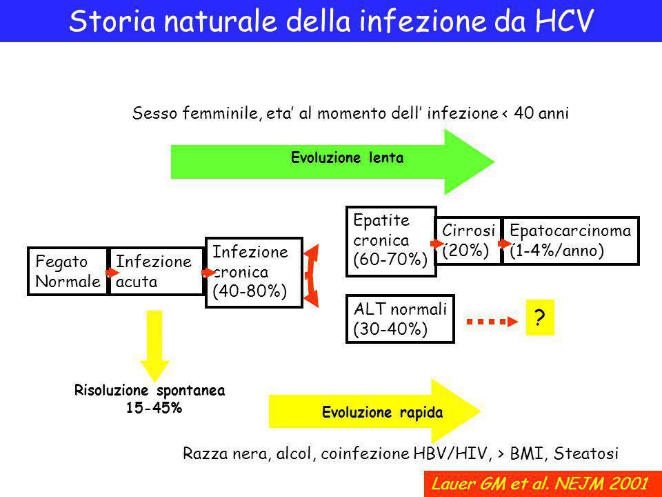 Storia naturale della infezione da HCV Sesso femminile, eta' al momento dell' infezione < 40 anni Razza nera, alcol, coinfezione HBV/HIV, > BMI, Steatosi Fegato Normale Infezione acuta Infezione cronica (40-80%) Epatite cronica (60-70%) Cirrosi (20%) Epatocarcinoma (1-4%/anno) Evoluzione lenta Evoluzione rapida Lauer GM et al.