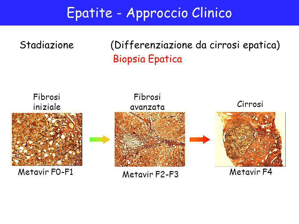 Epatite - Approccio Clinico Stadiazione(Differenziazione da cirrosi epatica) Fibrosi iniziale Fibrosi avanzata Cirrosi Biopsia Epatica Metavir F0-F1 Metavir F2-F3 Metavir F4