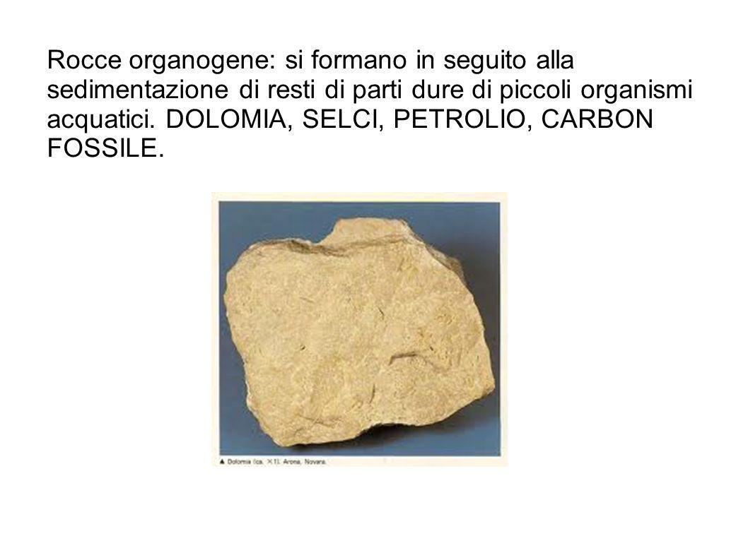 Rocce organogene: si formano in seguito alla sedimentazione di resti di parti dure di piccoli organismi acquatici. DOLOMIA, SELCI, PETROLIO, CARBON FO