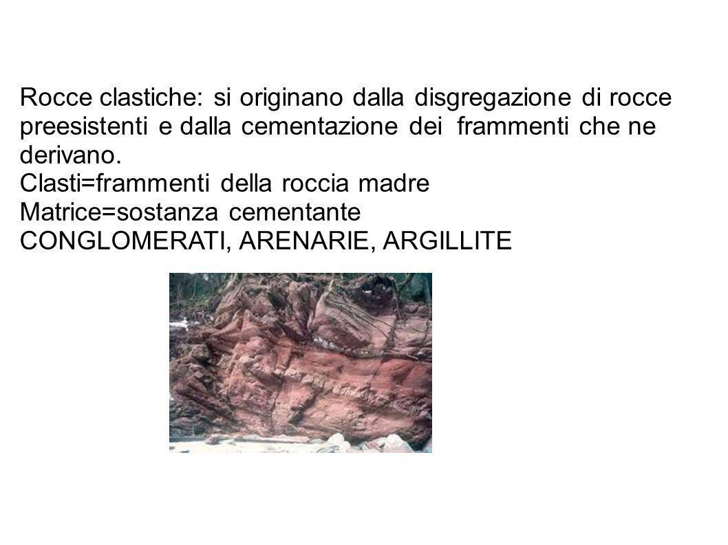 Rocce clastiche: si originano dalla disgregazione di rocce preesistenti e dalla cementazione dei frammenti che ne derivano. Clasti=frammenti della roc