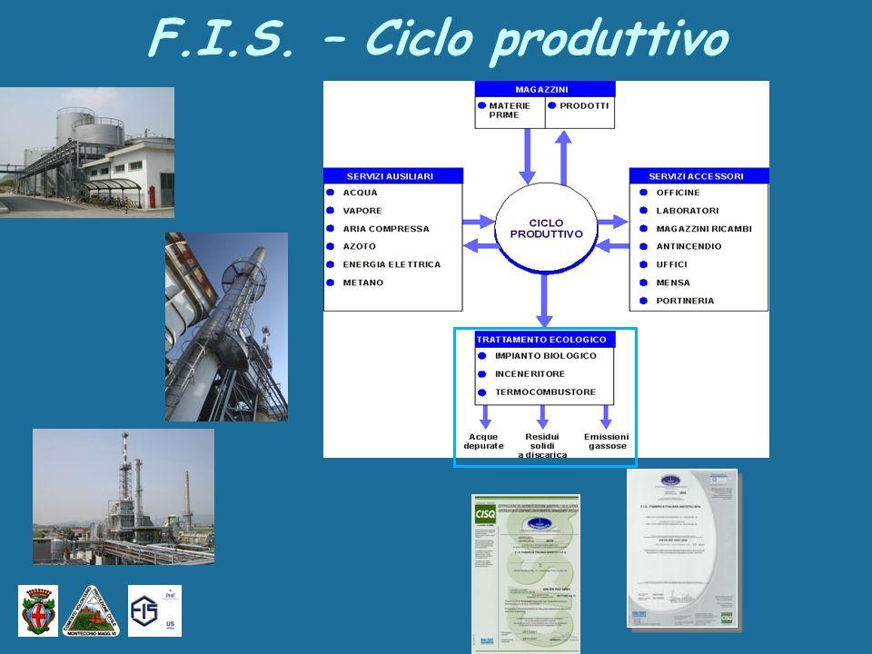 F.I.S. – Ciclo produttivo