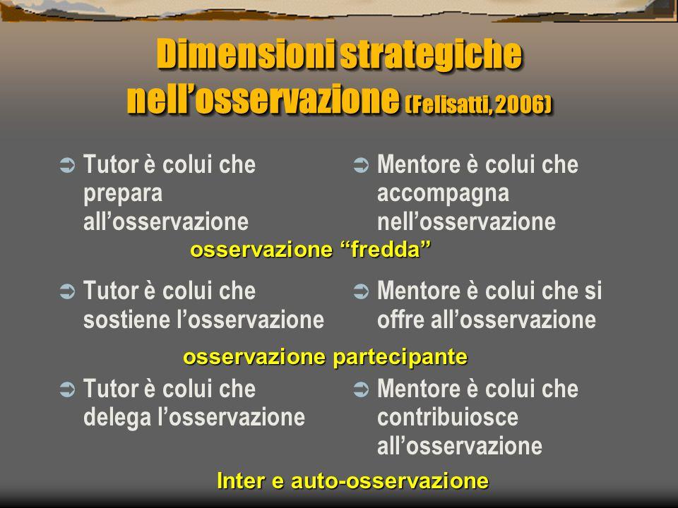 Dimensioni strategiche nell'osservazione (Felisatti, 2006)  Tutor è colui che prepara all'osservazione  Tutor è colui che sostiene l'osservazione 