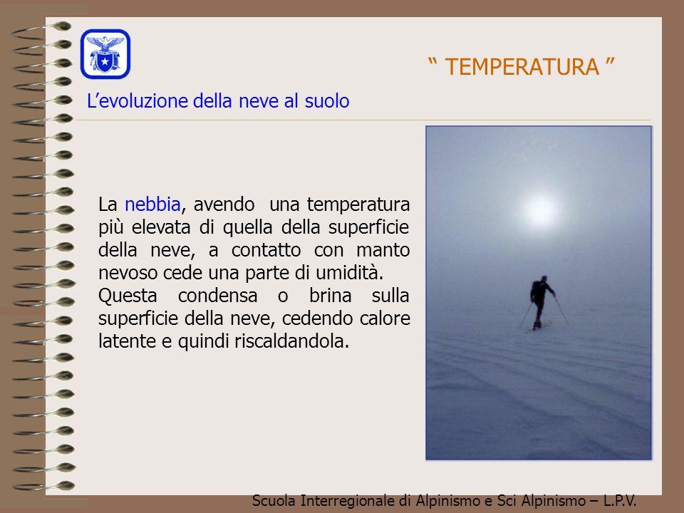 Scuola Interregionale di Alpinismo e Sci Alpinismo – L.P.V. La nebbia, avendo una temperatura più elevata di quella della superficie della neve, a con