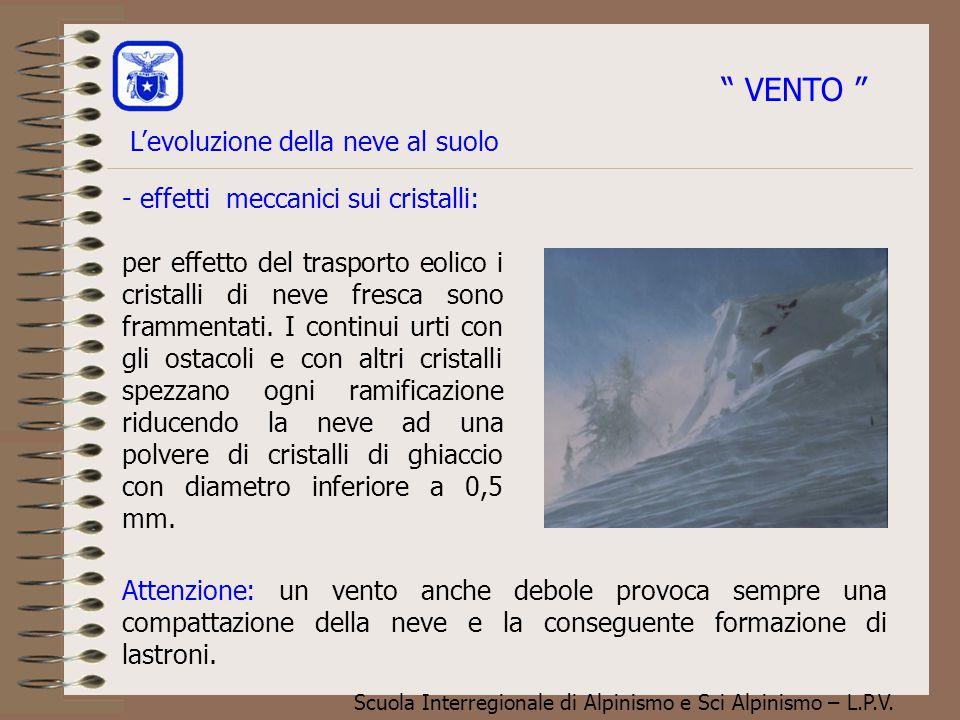 Scuola Interregionale di Alpinismo e Sci Alpinismo – L.P.V. - effetti meccanici sui cristalli: per effetto del trasporto eolico i cristalli di neve fr