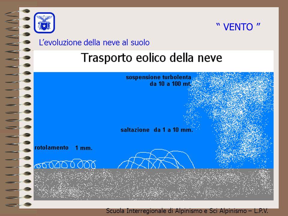 """Scuola Interregionale di Alpinismo e Sci Alpinismo – L.P.V. L'evoluzione della neve al suolo """" VENTO """""""