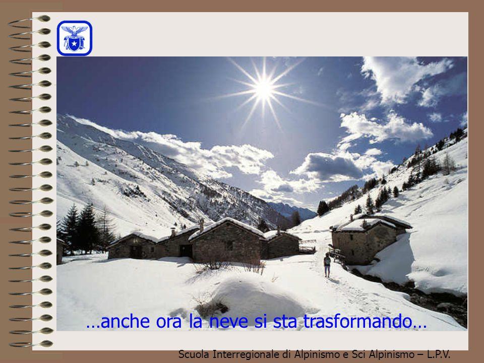 Scuola Interregionale di Alpinismo e Sci Alpinismo – L.P.V. …anche ora la neve si sta trasformando…