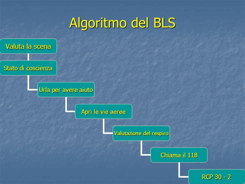 Algoritmo del BLS