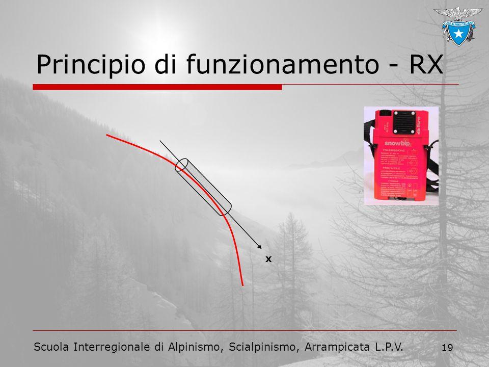 Scuola Interregionale di Alpinismo, Scialpinismo, Arrampicata L.P.V. 19 Principio di funzionamento - RX x