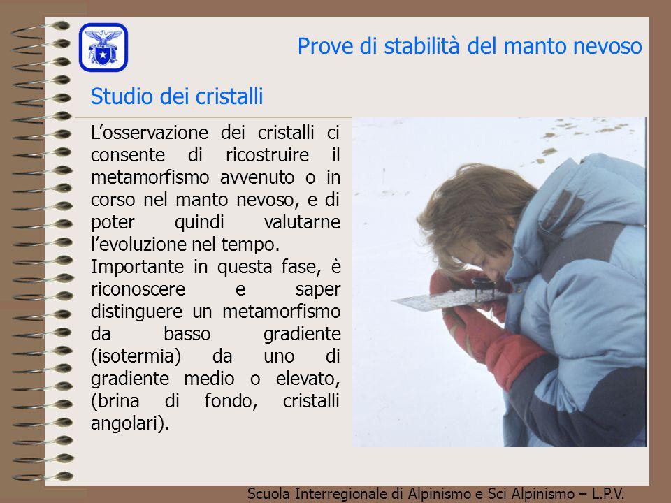Scuola Interregionale di Alpinismo e Sci Alpinismo – L.P.V. Prove di stabilità del manto nevoso