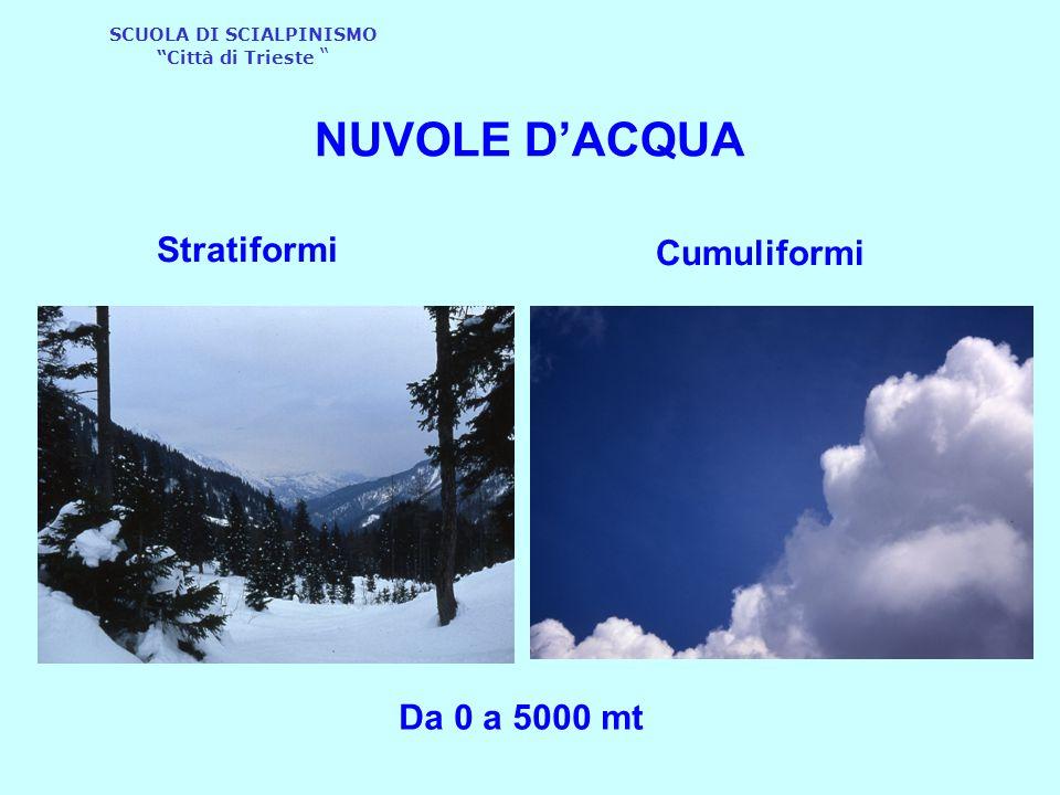 """SCUOLA DI SCIALPINISMO """"Città di Trieste """" Stratiformi Cumuliformi NUVOLE D'ACQUA Da 0 a 5000 mt"""