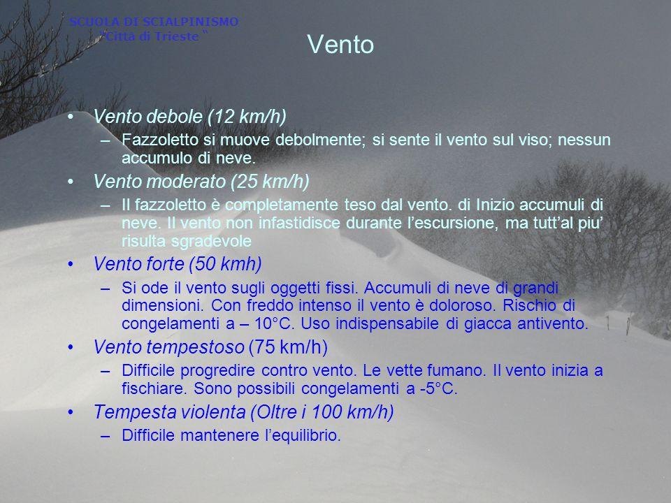 """SCUOLA DI SCIALPINISMO """"Città di Trieste """" Vento Vento debole (12 km/h) –Fazzoletto si muove debolmente; si sente il vento sul viso; nessun accumulo d"""