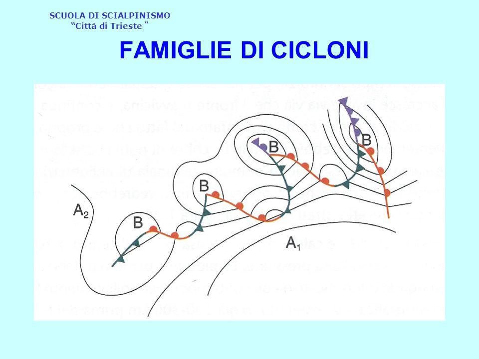 FAMIGLIE DI CICLONI