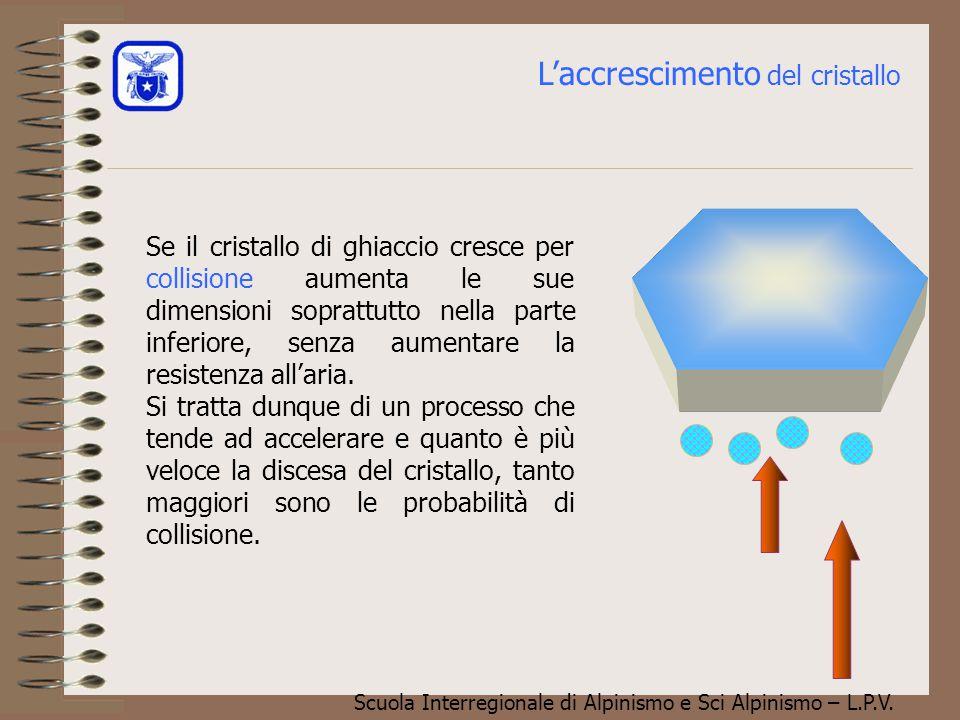 """Scuola Interregionale di Alpinismo e Sci Alpinismo – L.P.V. L'accrescimento per """"sublimazione * del vapore aumenta le dimensioni del cristallo verso i"""