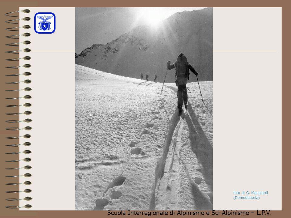 Scuola Interregionale di Alpinismo e Sci Alpinismo – L.P.V. L'abbondanza delle forme dei cristalli di neve non si presta a dei semplici metodi di clas