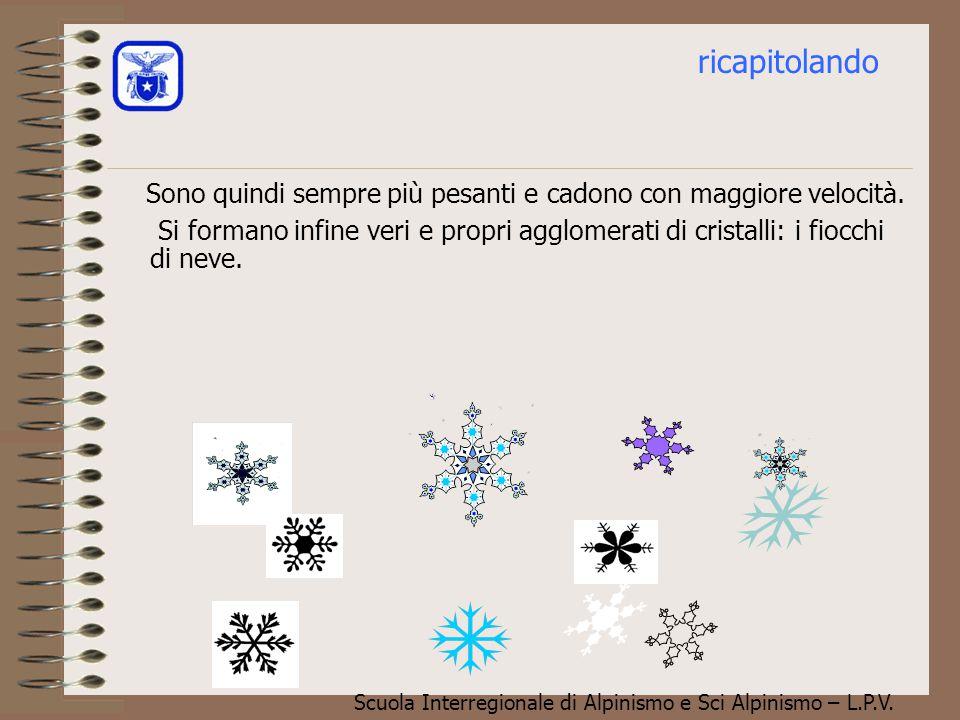 Scuola Interregionale di Alpinismo e Sci Alpinismo – L.P.V. Durante la caduta i cristalli diventano sempre più grossi per coalescenza, vale a dire cat
