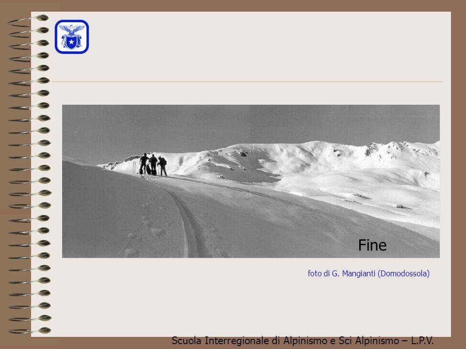 Scuola Interregionale di Alpinismo e Sci Alpinismo – L.P.V. Altre Idrometeore solide Si può formare con una certa frequenza, specie all'inizio della s