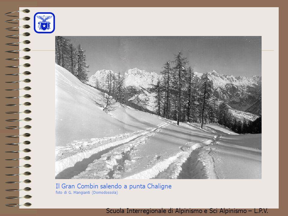 Scuola Interregionale di Alpinismo e Sci Alpinismo – L.P.V. Purtroppo ci si dimentica che la neve è una materia che vive, che cambia, e che in certi c