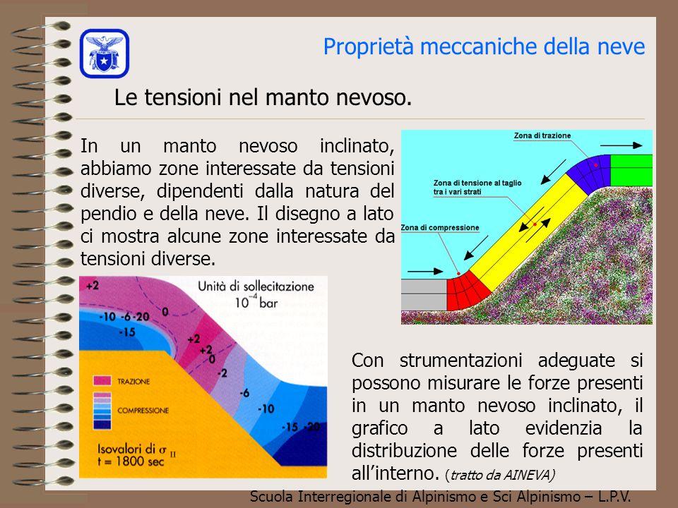Scuola Interregionale di Alpinismo e Sci Alpinismo – L.P.V. a b Il neviflusso Il manto nevoso è soggetto alla forza di gravità che ne provoca un lento