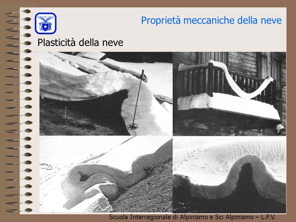 Scuola Interregionale di Alpinismo e Sci Alpinismo – L.P.V. Plasticità della neve Il neviflusso lo si può osservare molto bene, sui tetti ricoperti di