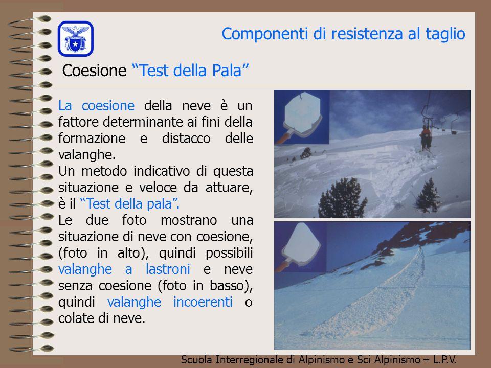 Scuola Interregionale di Alpinismo e Sci Alpinismo – L.P.V. Componenti di resistenza al taglio Coesione per rigelo:Formazione di ghiaccio. L'acqua pre