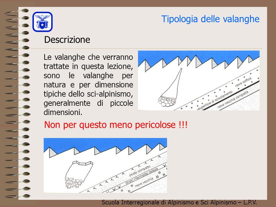 Scuola Interregionale di Alpinismo e Sci Alpinismo – L.P.V. Argomenti trattati 1.Tipologia delle valanghe 2.Deformazioni nel manto nevoso 3.Componenti