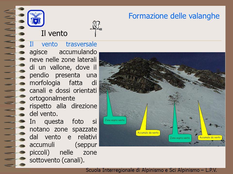 Scuola Interregionale di Alpinismo e Sci Alpinismo – L.P.V. Formazione delle valanghe Il vento Il vento, abbiamo visto in precedenza, trasporta la nev
